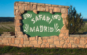 Safari de Madrid.